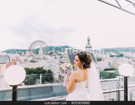 The horizontal view of the bride enjoying the cityview. stock photo, The horizontal view of the bride enjoying the cityview by Andrii Kobryn