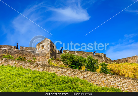 Three Cannons on Fort Wall stock photo, Part of an old fortress in the tropics by Darryl Brooks
