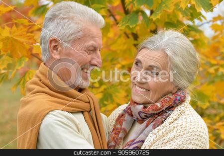 happy Senior couple  in park  stock photo, Portrait of happy senior couple in autumn park by Ruslan Huzau