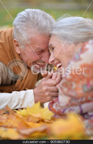 Senior couple  in autumn park  stock photo, Portrait of happy senior couple in autumn park by Ruslan Huzau