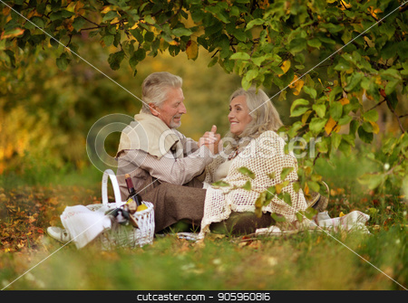 senior couple outdoors stock photo, Happy senior couple having picnic  in autumn park by Ruslan Huzau
