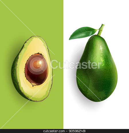 Avocado and slice illustration stock photo, Avocado and slices on a white and green background. by ConceptCafe