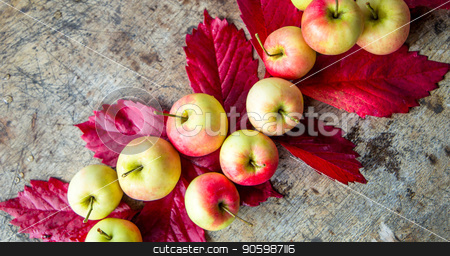 Apples grape leaves on old boards. autumn, Autumnal vertical background. stock photo, colorful Apples grape leaves on old boards. autumn, Autumnal vertical background. by Arina Komarova
