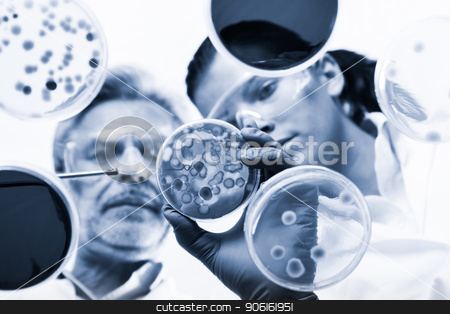 Life scientists researching in the health care laboratory. stock photo, Scientists researching in laboratory, pipetting cell culture samples and serum on LB agar medium. Life science professional grafting bacteria in the petri dishes. Through the glass view by kasto