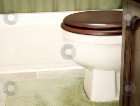 Bathroom Toilet setting stock photo, Bathroom toilet setting by John Teeter