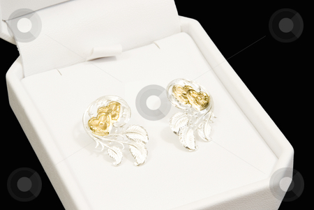 Pair of earrings stock photo, Pair of earrings silver and gold in gift box by John Teeter