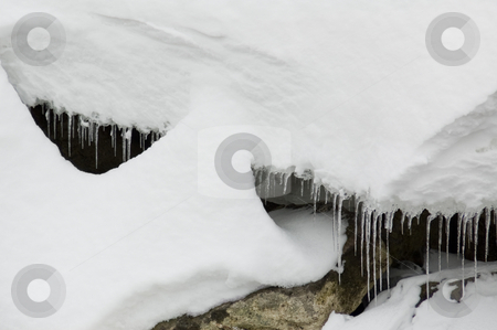 Winter icicles stock photo, Row of icicles under a thick layer of snow by Jean Larue-Frechette