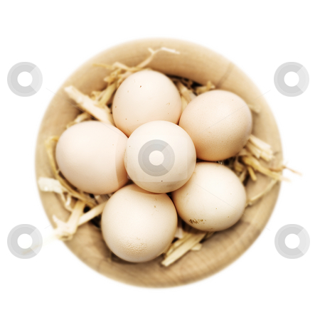 Eggs stock photo, Freshly gattered eggs in a basket over white by Tommy Maenhout