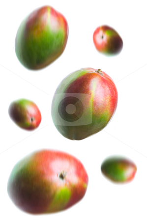 Mango's stock photo, One mango in focus with others falling down around it. by Tommy Maenhout