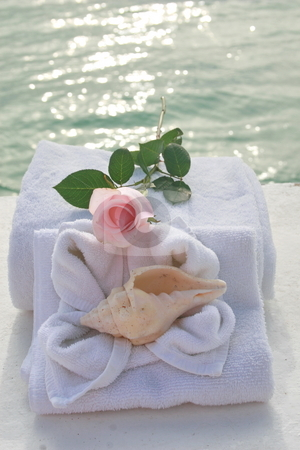 Romantic spa day stock photo, Romantic spa setting with towels, roses and sea shells. by Crystal Kirk