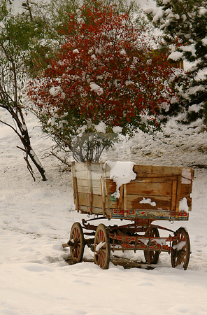 Wagon In The Snow stock photo, Wagon in the snow in ankara turkey by Kobby Dagan