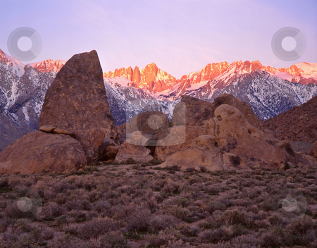 Mt. Whitney and the Alabama Hills 1 stock photo, Mt. Whitney and the Alabama Hills in the Inyo National Forest of California. by Mike Norton
