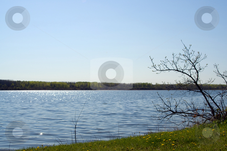 Small Lake stock photo, A small lake with the sun shining on the water by Richard Nelson