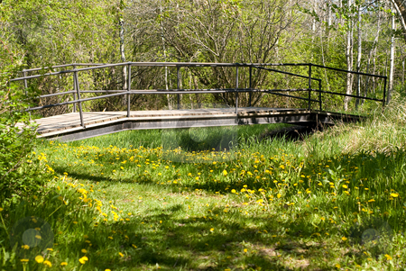 Bridge In Park stock photo, A wooden bridge covering a small stream in the park by Richard Nelson