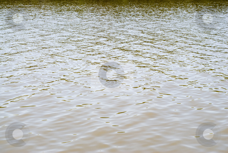 River Background stock photo, Dirty river water background, shot during the day by Richard Nelson