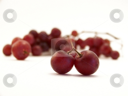 Red Grapes on White, Horizontal stock photo, Image of two joined red grapes, with others in the background.  Horizontal orientation. by Jill Oliver