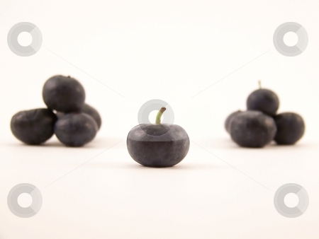 Blueberries stock photo, Image of a single blueberry with others piled in the background. by Jill Oliver