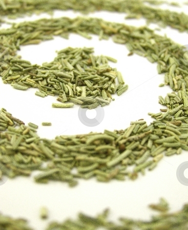 Dried Rosemary Swirl, Vertical stock photo, Image of dried rosemary forming a spiral, on white.  Vertical orientation. by Jill Oliver