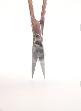 Manicure Scissor Blades stock photo, Image of slightly open, bright metal manicure scissor blades.  Vertical orientation. by Jill Oliver