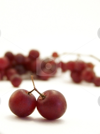 Red Grapes on White, Vertical stock photo, Image of two joined grapes on white background.  Vertical orientation. by Jill Oliver