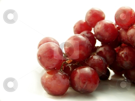 Wet Red Grapes on White stock photo, Image of wet red grapes, on white background.  Horizontal orientation. by Jill Oliver