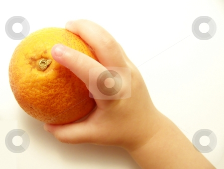Baby Hand with Blood Orange stock photo, Image of a small child's hand holding a bright blood orange. by Jill Oliver