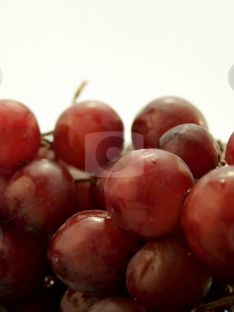 Piled Wet Red Grapes stock photo, Close up image of piled wet red grapes, on white background.  Vertical orientation. by Jill Oliver