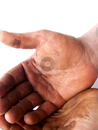 Expectant, Hardworking Hands stock photo, Image of hardworking hands held together, on a white background.  Vertical orientation. by Jill Oliver