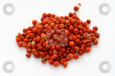 Red Pepper stock photo, Rosa Pfeffer by Wolfgang Heidasch