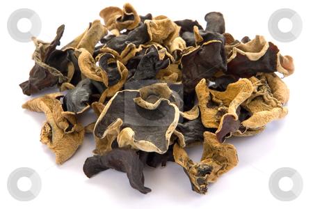 Chinesische Pilze Mu Err Wolkenohr stock photo, Chinesische Pilze Mu Err Wolkenohr by Wolfgang Heidasch