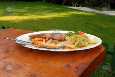 Dinner plate stock photo, Full dinner plate close-up in the garden by Joanna Szycik