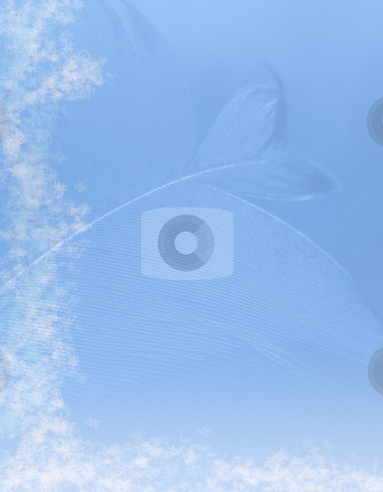 Snowflakes and feather stock photo, Snowflake and feather pattern on blue by Ronald Hudson