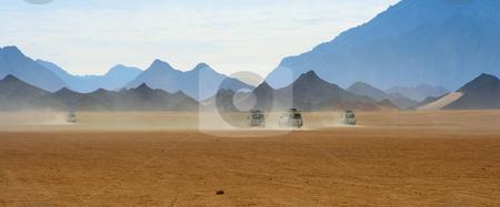 Safari stock photo, A photography of a safari in Egypt by Markus Gann