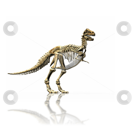 T-rex skeleton stock photo, A illustration of a huge t-rex skeleton by Markus Gann