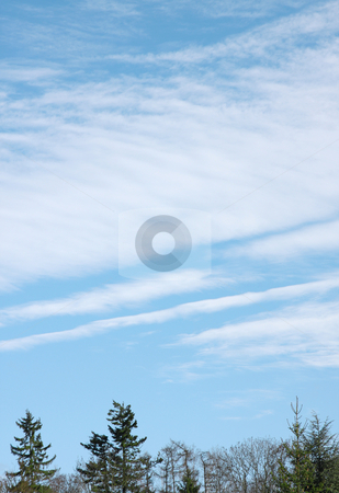 Clouds stock photo, A photography of a bright cloudy sky by Markus Gann