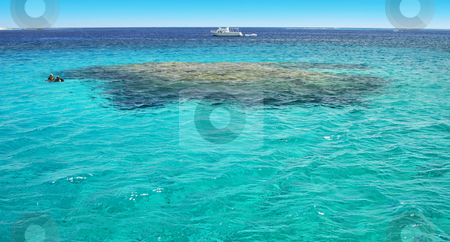 Turquoise water riff scuba diving stock photo, A photography of a turquoise ocean water riff by Markus Gann