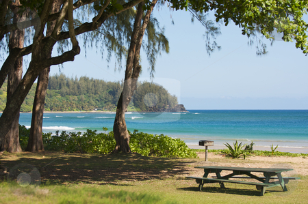 Inviting Tropical Park  stock photo, Inviting Tropical Park - Halalei Bay, Kauai, Hawaii by Andy Dean