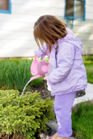 Helping Hands stock photo, Girl watering flower bed with pink watering can by Richard Nelson