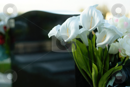 Grave stock photo, Soft view of a headstone with some white flowers beside it by Richard Nelson