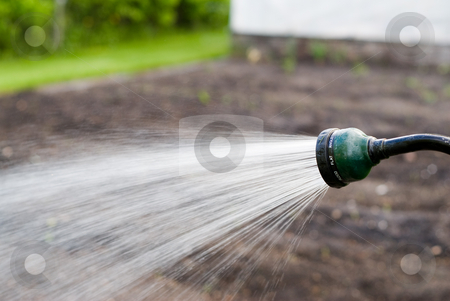 Steady Stream stock photo, Close-up view of a garden hose spraying water by Richard Nelson