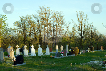 Graveyard stock photo, Rows of graves lining a rural cemetery by Richard Nelson