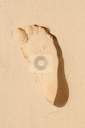 Footprint in sand stock photo, Single footprint on a sandy beach close up by Elena Elisseeva