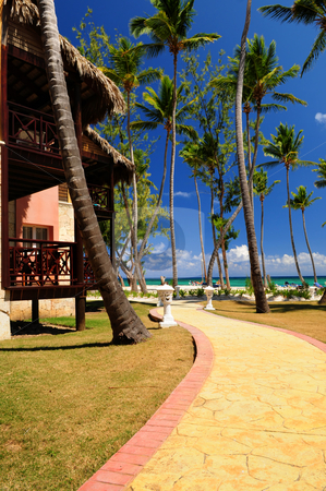 Tropical resort stock photo, Luxury hotel at tropical resort on ocean shore with palm trees by Elena Elisseeva