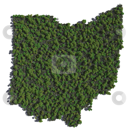 Ohio in Trees stock photo,  by Allan Tooley