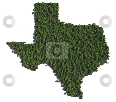 Texas in Trees stock photo, The shape of Texas grown in trees. by Allan Tooley
