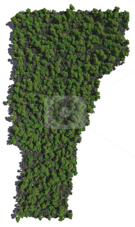 Vermont in Trees stock photo, The shape of Vermont grown in trees. by Allan Tooley