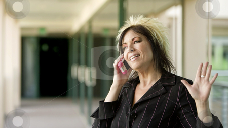 Modern Businesswoman on a Cell Phone stock photo, Modern businesswoman in an outdoor walkway talking on her cell phone by Scott Griessel