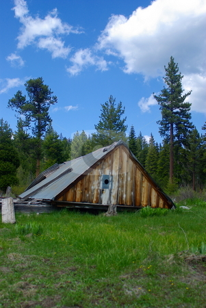 Old Colapsed Mountain Cabin stock photo, An old cabin in ruins in a high sierra meadow by Lynn Bendickson