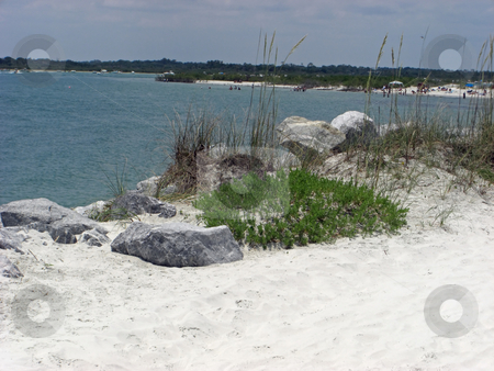 Dunes and Bolders stock photo, Large bolders are lying on the dunes at the beach in Ponce Inlet, FL. by Rebecca Mosoetsa