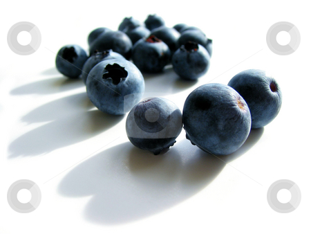 Blueberries macro on white stock photo, Fresh blueberries macro on white background with shadows by Elena Elisseeva